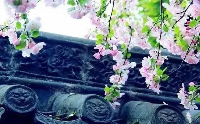 优美句子短句及出处【赞美桂林山水的优美句子短句】
