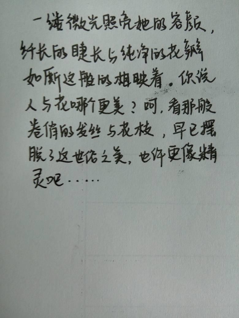 优美的句子每句50字左右就行【优美的句子经典优美语句摘抄50字】