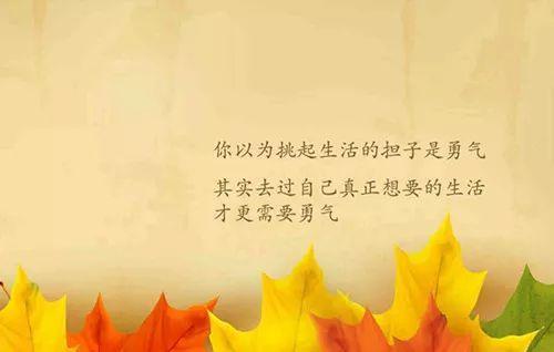 孝顺正能量的句子【正能量激励的句子经典】