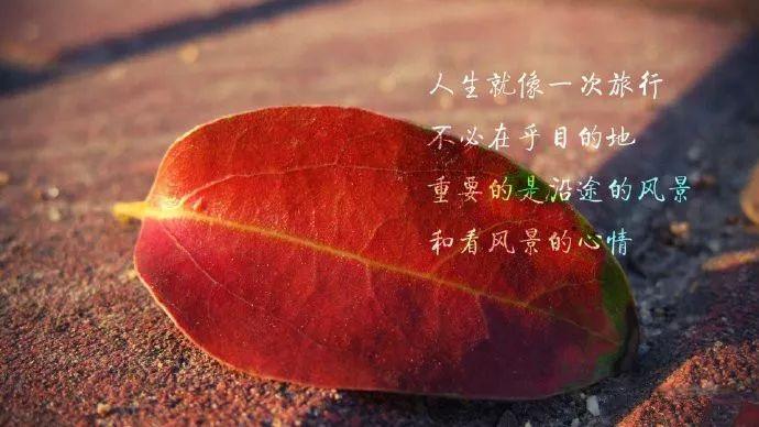 人生句子短句【送给陌生人暖心的短句】