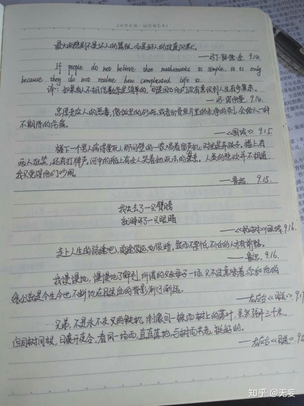 优美短句子摘抄加赏析【好段摘抄加赏析100字】