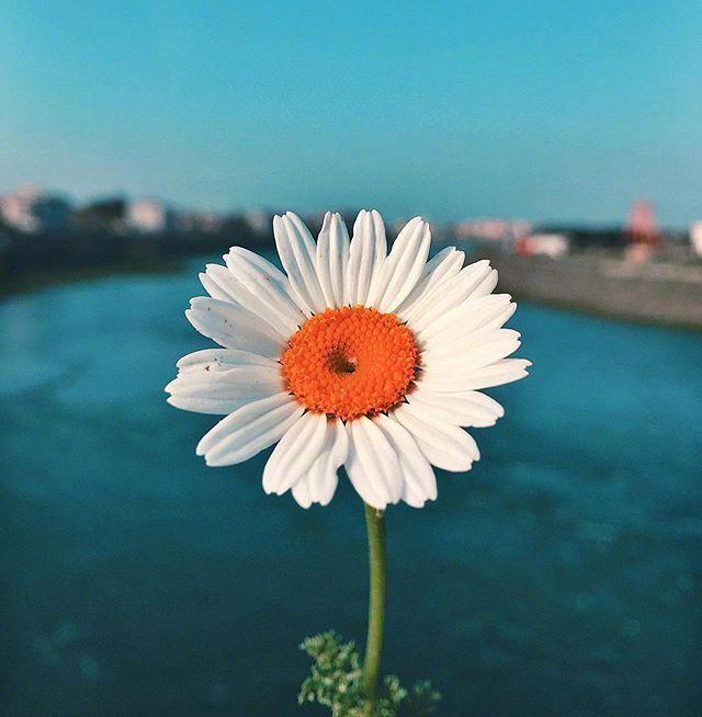 形容早上阳光的句子说说心情的简单介绍