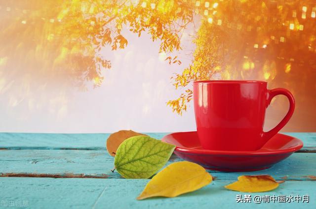 简短温暖人心充满阳光的句子【描写阳光的句子】