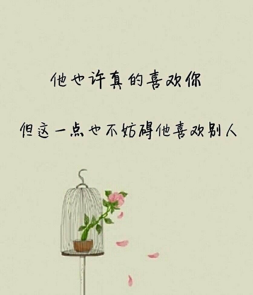 语录大全情感视频【15秒情感语录视频】