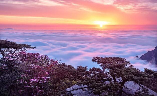 清晨的风景唯美句子【一路风景一路心情句子】