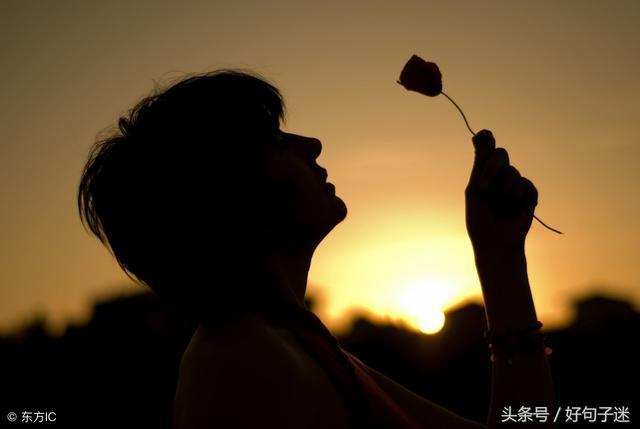 语录大全经典语录【作文中惊艳的神仙句子】
