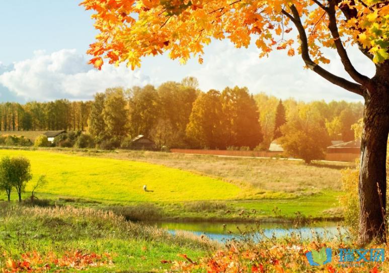 秋收的季节说说大全【秋天是收获的季节励志句子】