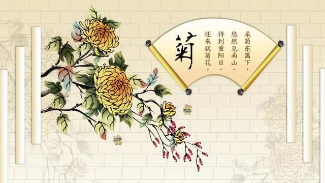 秋天赏菊的唯美句子【形容九月菊花的句子】